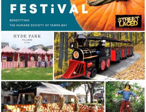 Street Laced Returns To Power Fall Festival at Hyde Park Village